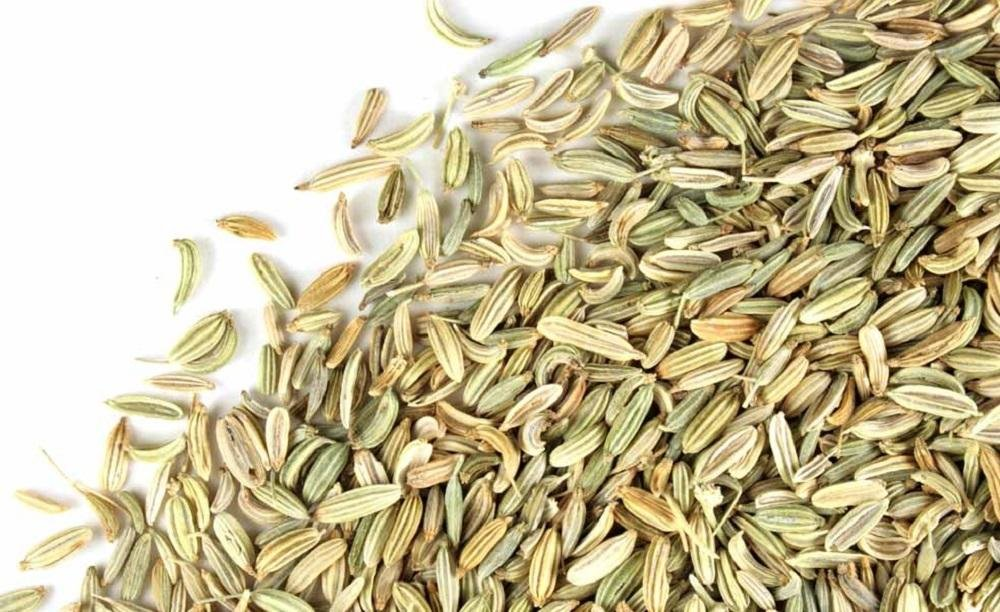 Fennel Seed Whole (1 lb)