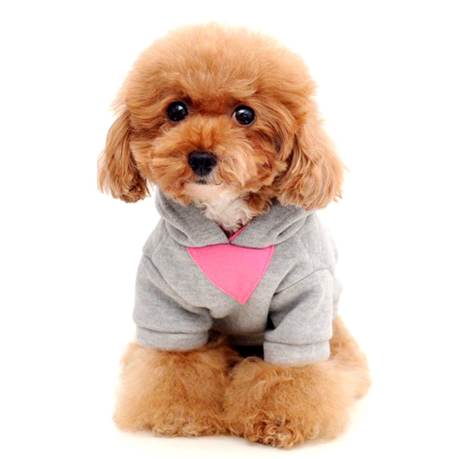 Alfie Pet by Petoga Couture - Wynna All-Season Hoodie - Color: Pink, Size: XS