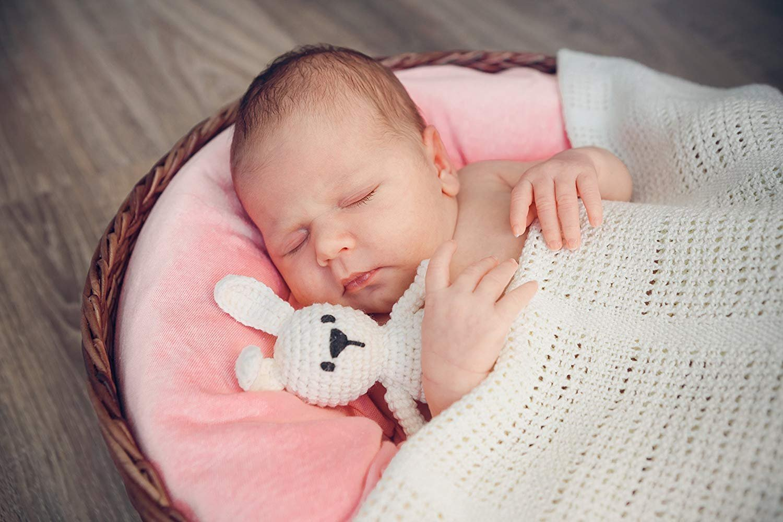 Newborn Baby Photography Photo Pillow Posing Props Donut Basket Filler 3 BONUS Pillows by Rain Cat