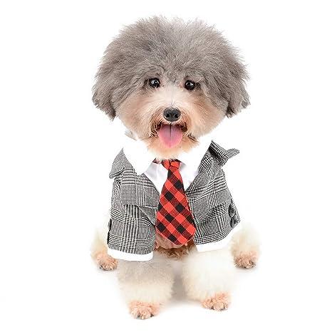 Zunea - Disfraz de Esmoquin para Perro pequeño, para Boda, Novio ...