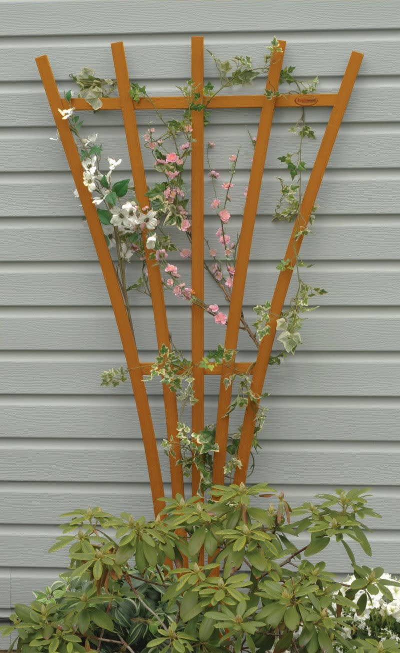 Hartford Fan Trellis made of wood with climbing pink and white flowers