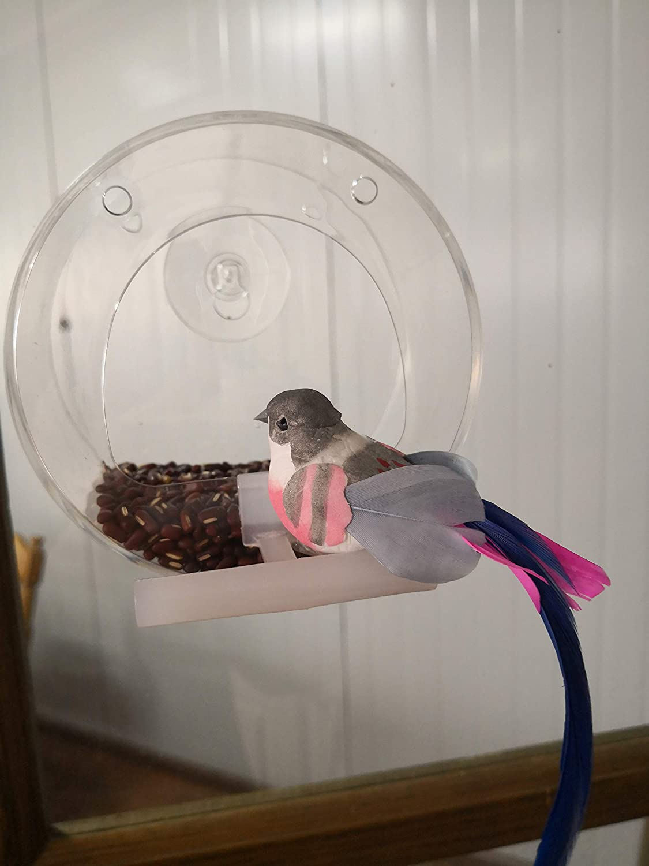 Ertisa - Comedero para pájaros, ventana de comedero para pájaros transparente de acrílico con ventosa de fijación y cadena colgante, comedero para pájaros con soporte comedero transparente para colgar