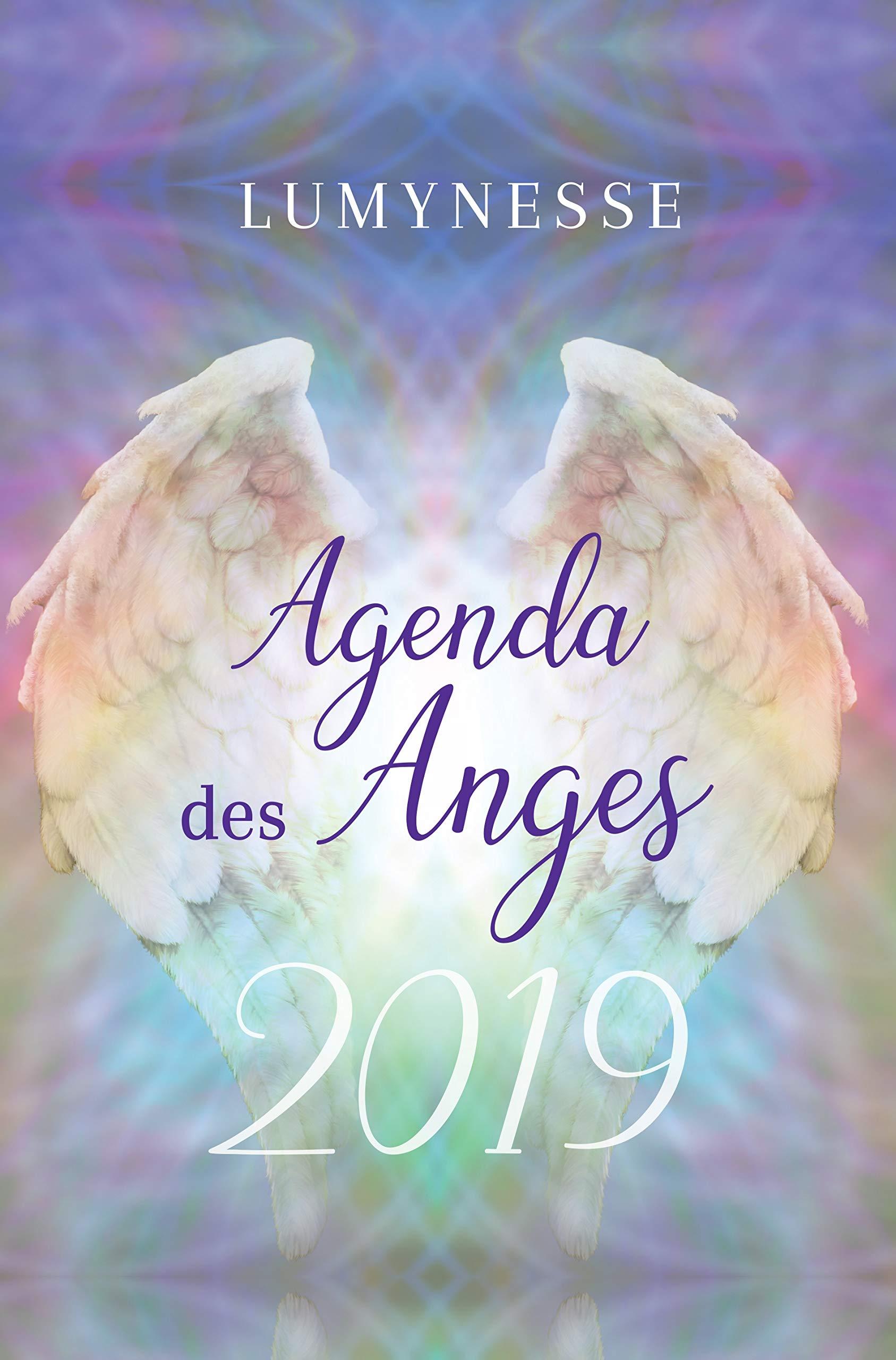 Agenda des anges 2019 Broché – 25 septembre 2018 Lumynesse EXERGUE 2361882566 Agendas