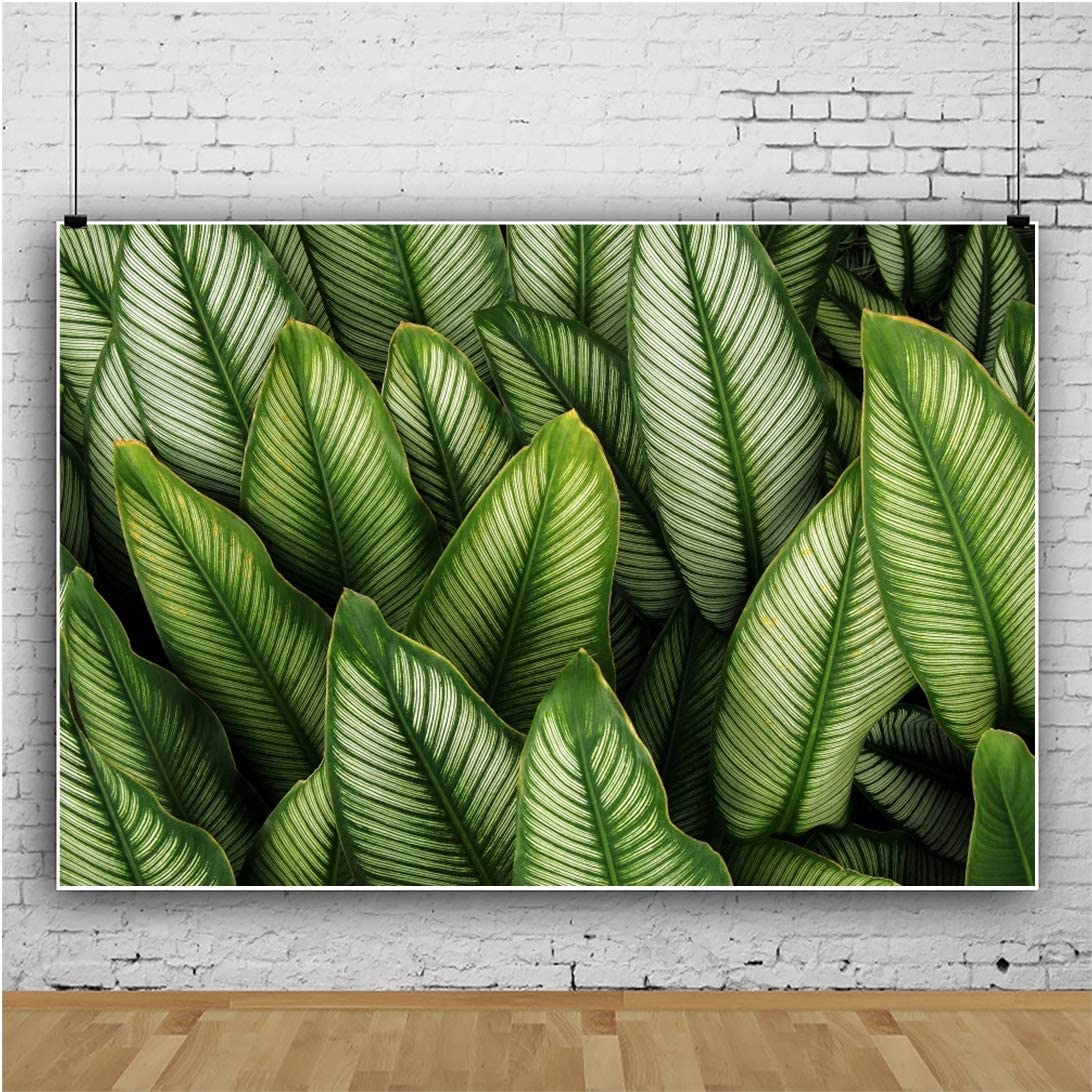 YEELE 10x8ft Tropical Foliage Plant Nature Leaves Backdrop Green Leaf with White Stripes Photography Background Safari Summer Party Birthday Table VBS Decor Photos Photobooth Digital Wallpaper