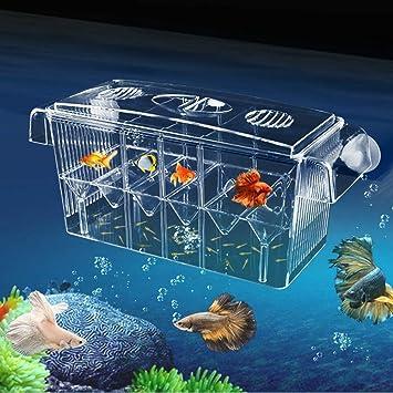BEITAI Incubadora de Peces con Auto-flotación Caja de Aislamiento de ...