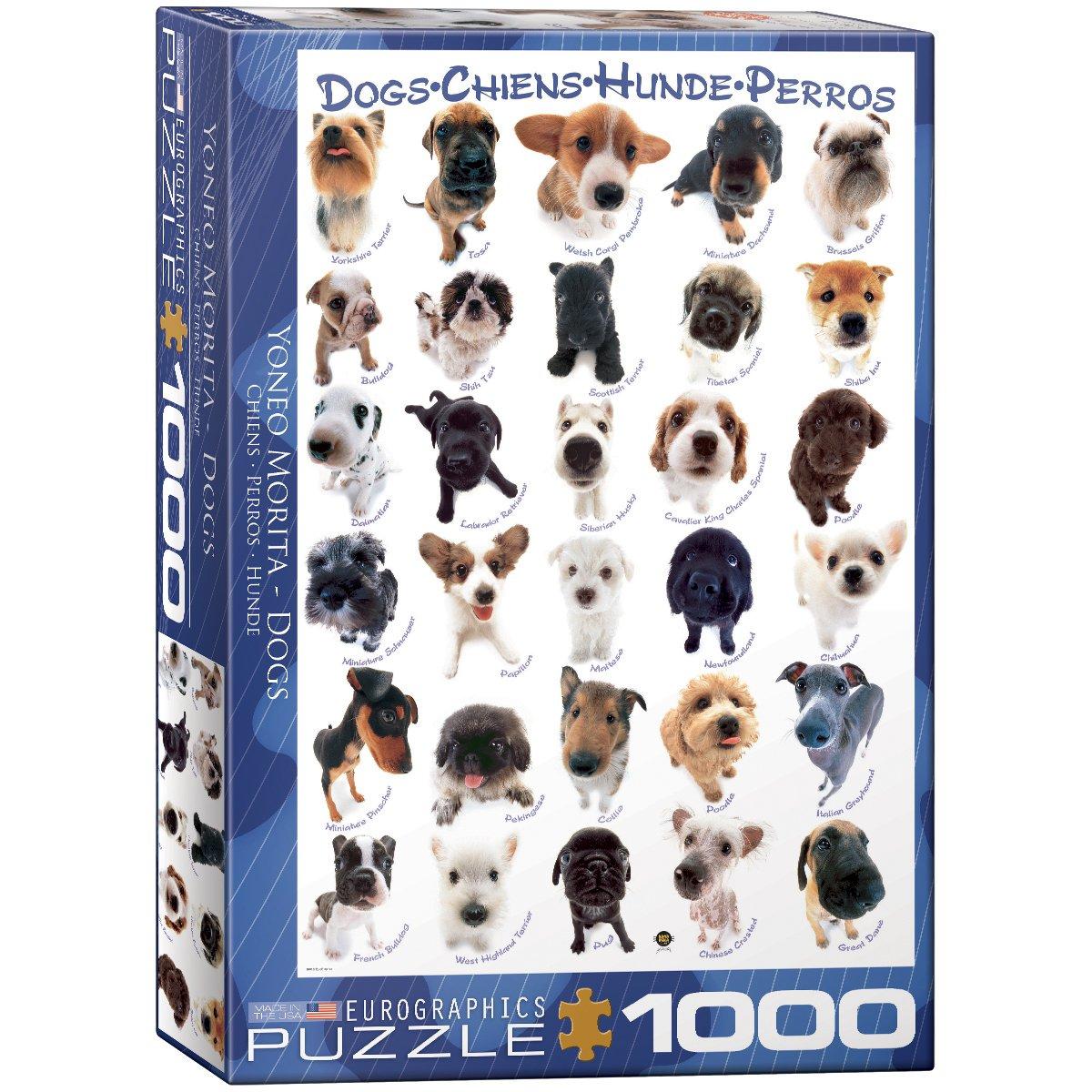 Amazon.com: EuroGraphics Dog Breeds 1000 Piece Puzzle: Toys & Games