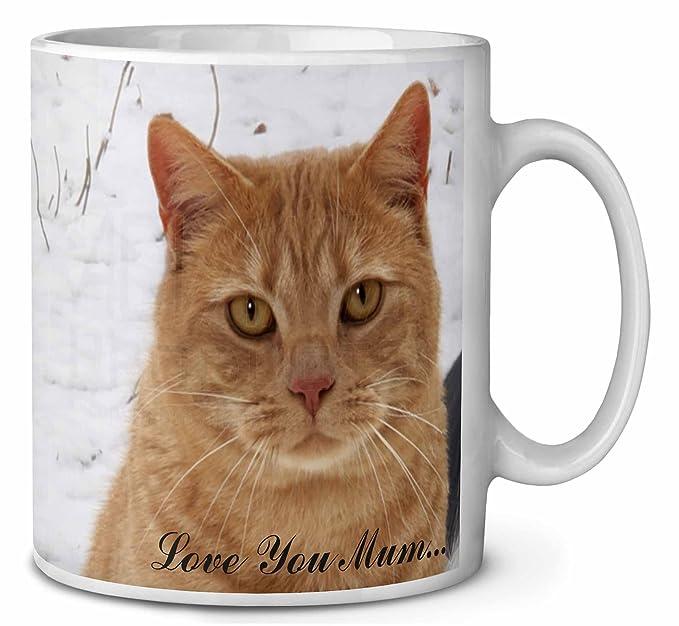 Gato del jengibre Love You Mum Cumpleaños taza de café regalo