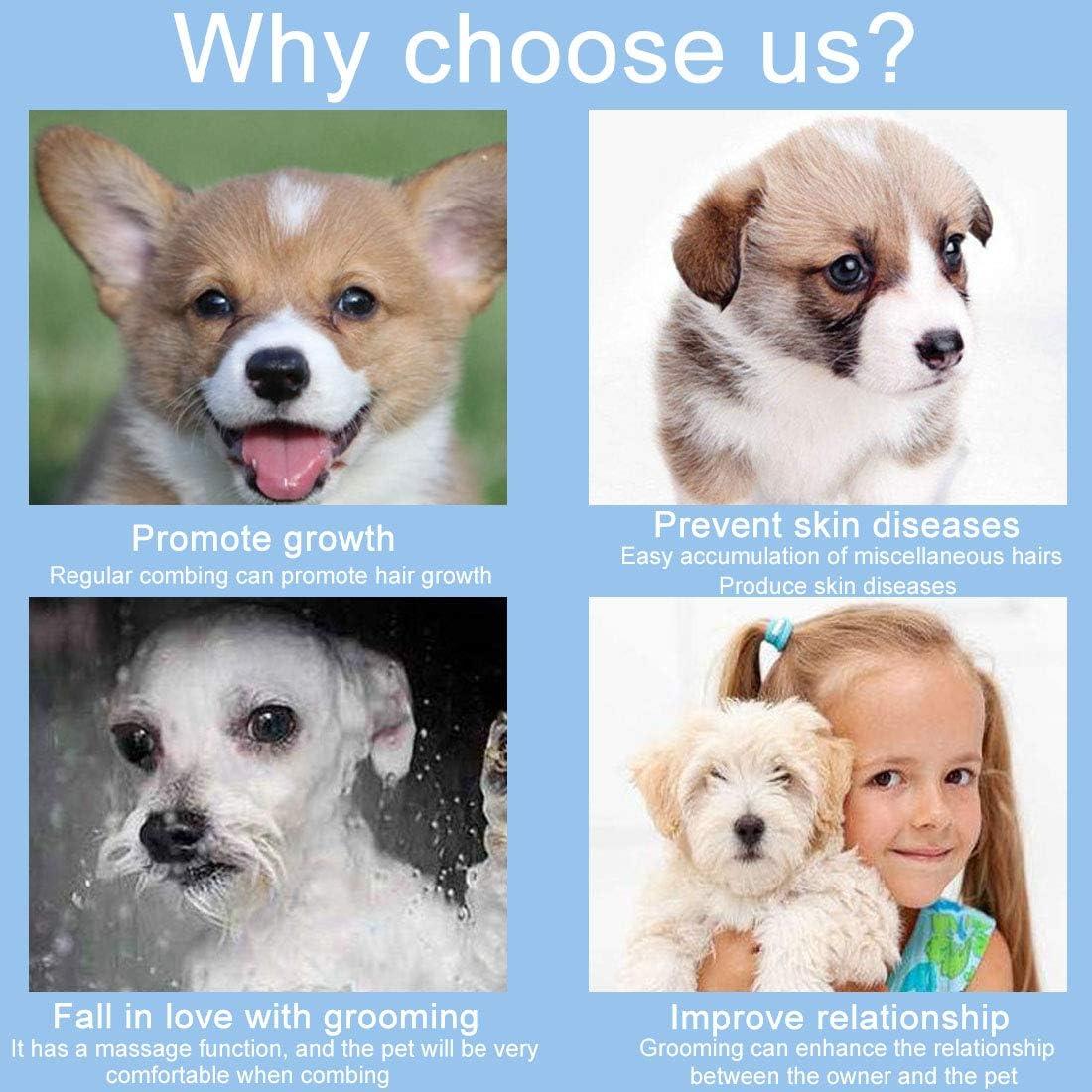 YUESEN Brush Mascota Perros Cepillo Herramienta de Aseo de Mascotas Mejora la Circulaci/ón de Acero Inoxidable Pelo Largo Cepillo para Perros y Gatos Azul