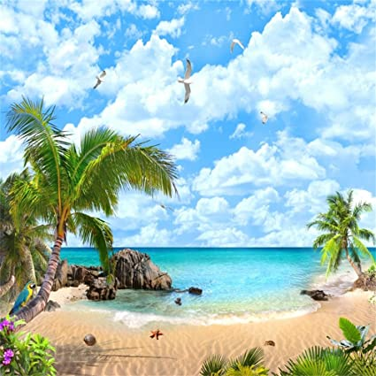 Leowefowa 3X5FT Seaside Sand Beach Backdrop Coconut Tree Sailing Ship Backdrops for Photography Beach Chair and Sunshade Shell Blue Sky White Cloud Ocean Vinyl Photo Background Kids Baby Studio Props