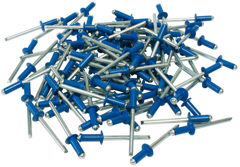 Cora 000116015 Kit 100 Rivetti Fissaggio Targa, Blu Cora S.p.A