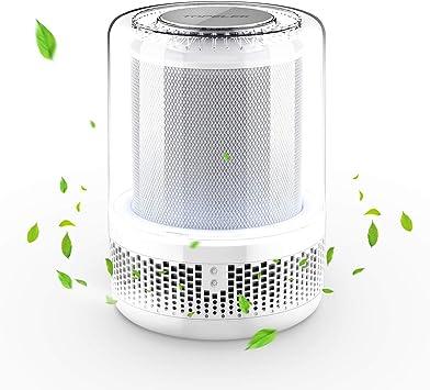 Purificador de aire Air Purifier con filtro True HEPA combinado ...