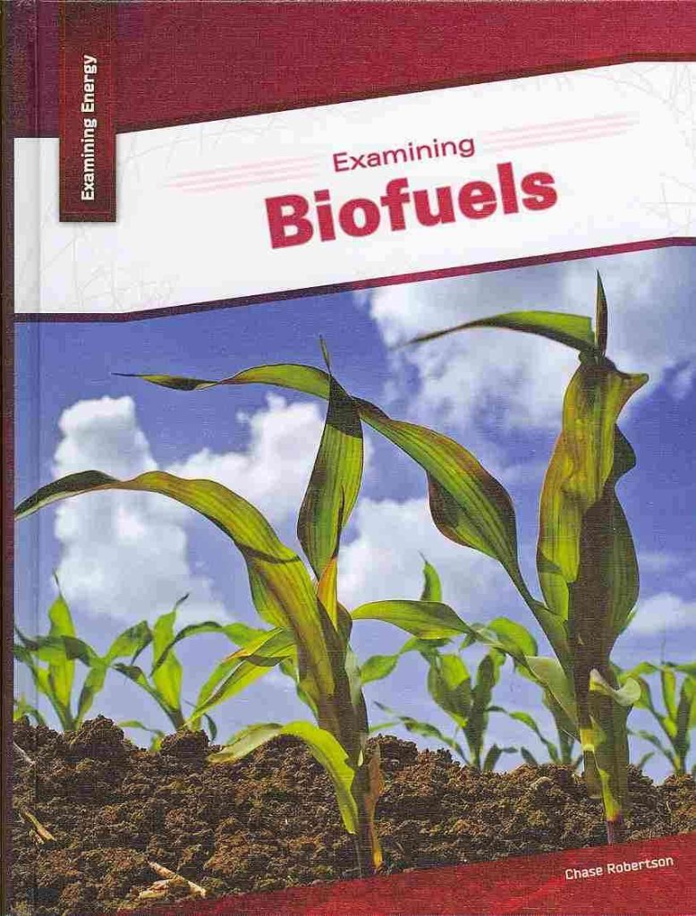 Download Examining Biofuels (Examining Energy) ebook