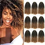 8 Inch Short Marlybob Crochet Hair 9 Bundles/Lot Afro Kinky Curly Crochet Braids Ombre Braiding Hair Synthetic Hair…