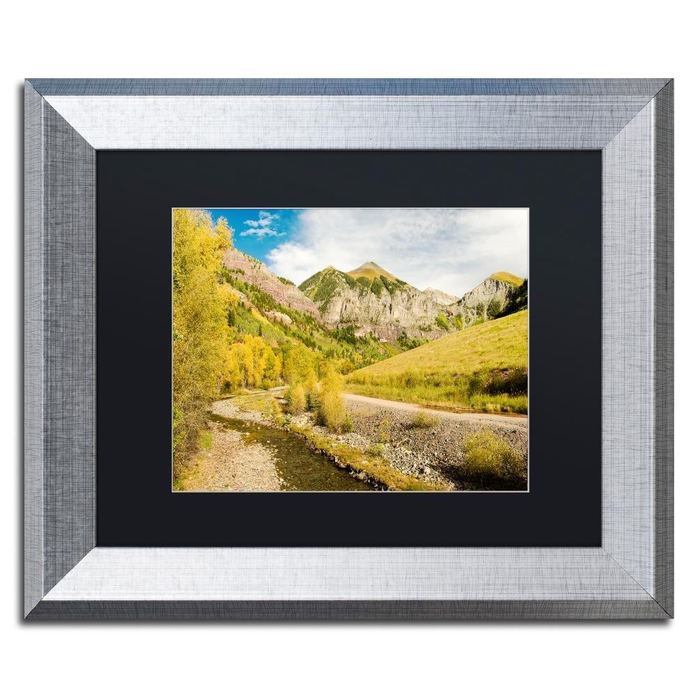 Trademark Fine Art Aspen Yellows by Michael Blanchette Photography, Black Matte, Silver Frame Original Artwork, 16x20'