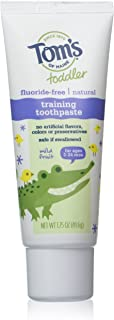 product image for Tom's of Maine, Dye and Fluoride Free Toddler Training Gel - Mild fruit, 1.75 Ounce