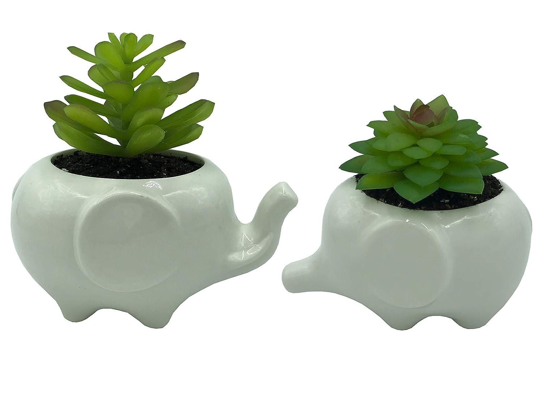 New Cute Succulent Plant Flower Pot Garden Planter pot Office Decor