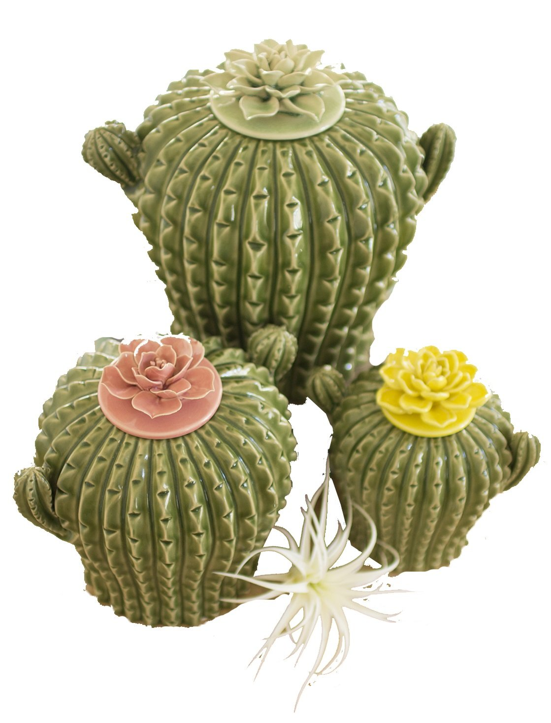 SET OF THREE CACTUS CANISTERS W/ FLOWER TOPS by Kalalou