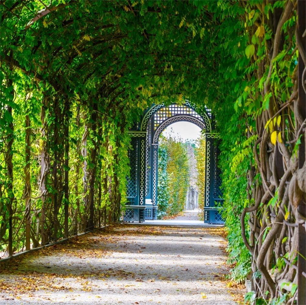 YongFoto 3x3m Vinilo Fondo de fotografía Jardin romantico Terraza de la Pasarela Pérgola de Madera Decoracion De Plantas Verdes Telón de Fondo de Fotografía Estudio de Foto Studio Props: Amazon.es: Electrónica