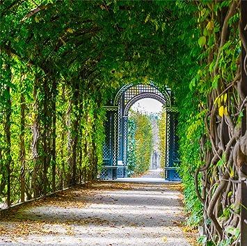 Yongfoto 2 5x2 5m Vinilo Fondo De Fotografía Jardin