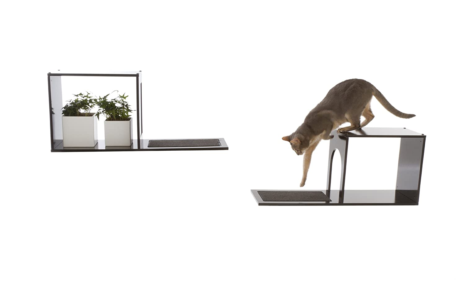 Top 10 Cat Shelves And Wall Perches How To Spoil Your