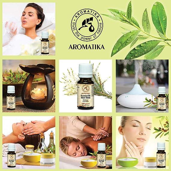 teebaumöl 100% naturreines aceite esencial 10 ml 0,33 oz, pura & natural té algodón aceite, aceite de euca Edad nifolia, Australia - Grande Antiséptico/Buen ...