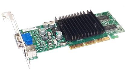 Amazon com: HP 289989-101 - GRAPHICS CARD -64MB DDR SDRAM