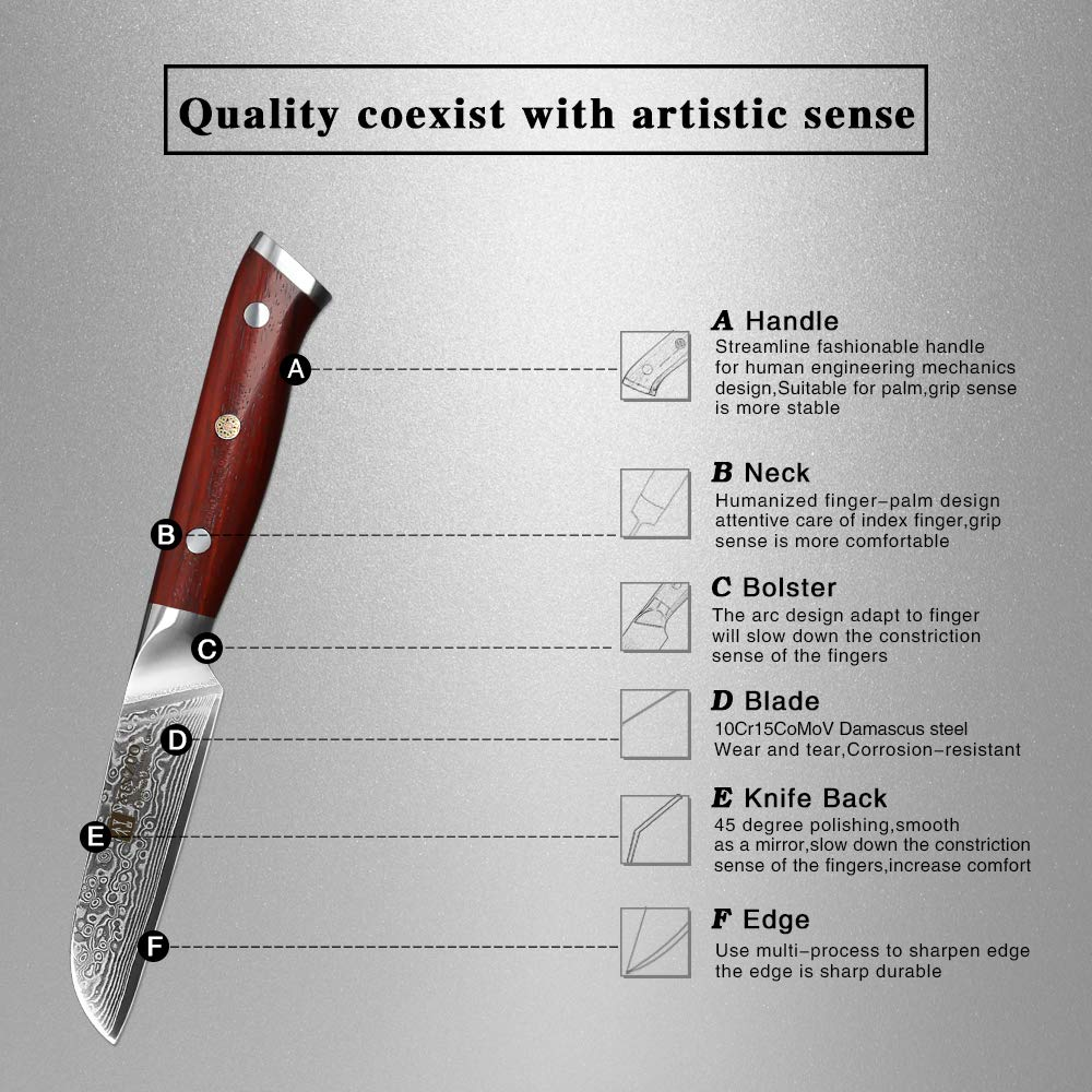 XINZUO 3.5 Inch Paring Knife 67 Layer Damascus Steel Kitchen Petty Knife Very Sharp Peeling Knife Fashion Professional Chef's Table Knife Cutlery Fruit Cutter with Rosewood Handle - Yu Series by XINZUO (Image #8)