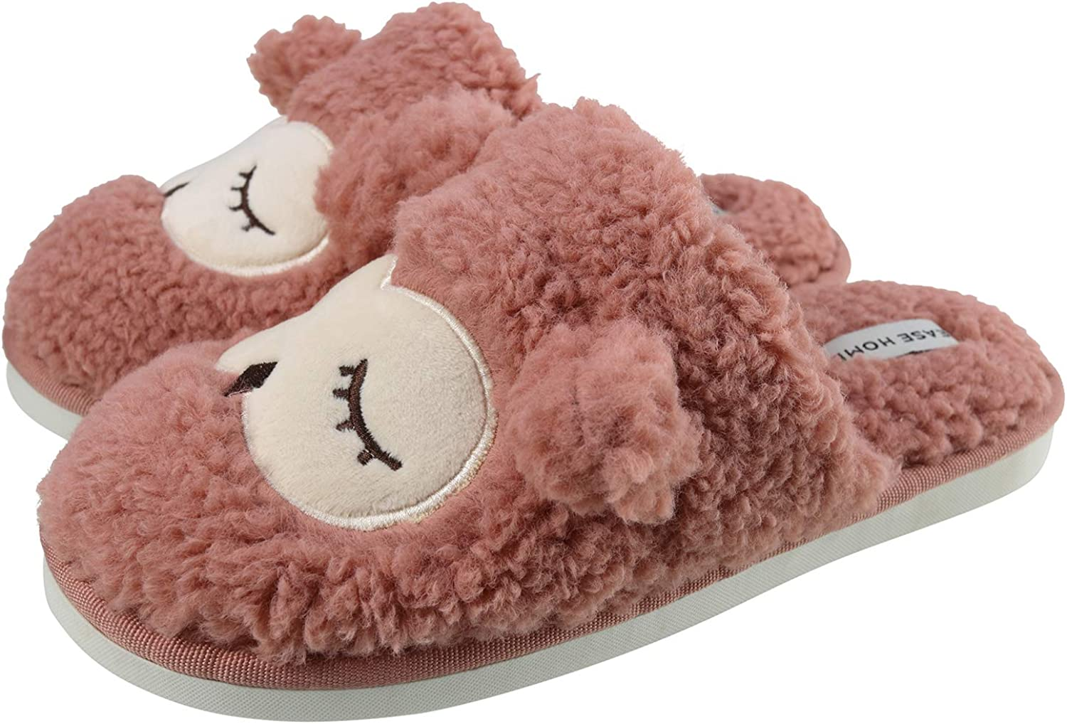 ChayChax Kids Cute House Slippers Boys Girls Warm Plush Indoor Home Slippers with Soft Anti-Skid Sole