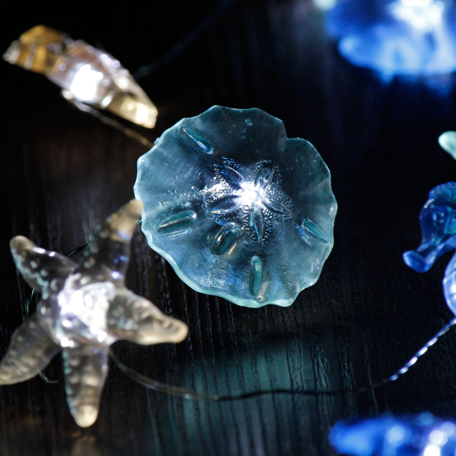 Impress Life Nautical Theme Decorative String Lights, Under The Sea Sand Dollars Seahorse Beach Lights with Remote 10 ft 30 LEDs for Covered Outdoor Camping Wedding Birthday Bedroom Parties Ornaments by Impress Life (Image #6)