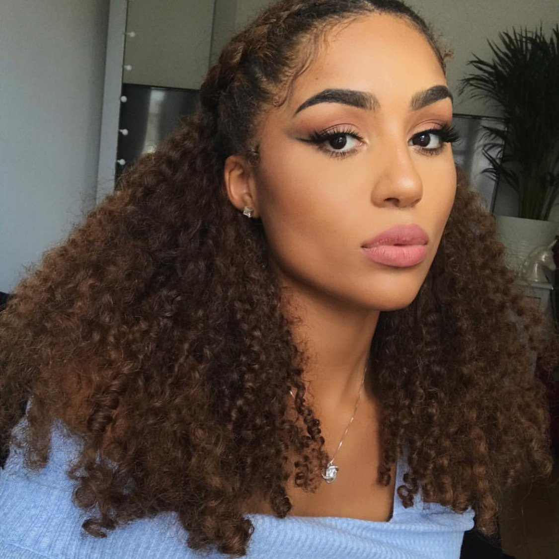 Ombre Afro Kinky Curly Hair Extensions Human Hair Clip In Extensions