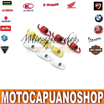 Muelles Racing Malossi para embrague YAMAHA 180 250 400 Majesty 300 Versity: Amazon.es: Coche y moto