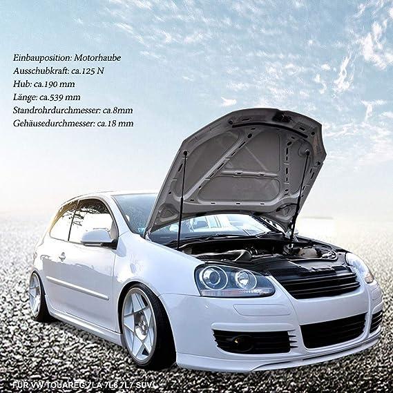 VW Gasfeder Motorhaube 38190