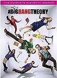 The Big Bang Theory Season 11 (DVD)