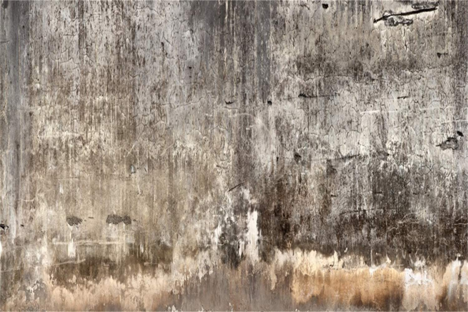 GoHeBe 10x6.5ft Rustic Dirty Cement Wall with Plaster Backdrop Vinyl Grunge Cracked Musty Texture Wall Background Studio Artistic Photographic Shoot Adult Portrait Event Activities Banner