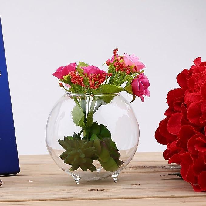 ... Forma Redonda Planta de Vidrio Florero de Flores Paisaje Florero Popular Nuevo Florero hidropónico Transparente Fishtank Pecera: Amazon.es: Hogar