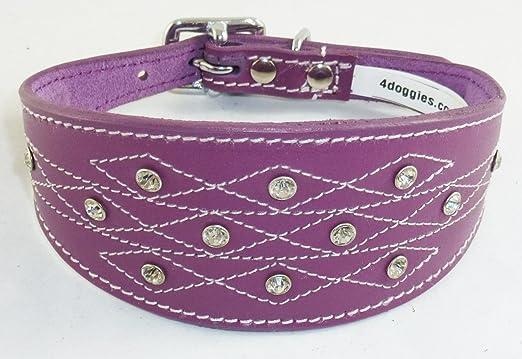 collier chien cuir violet