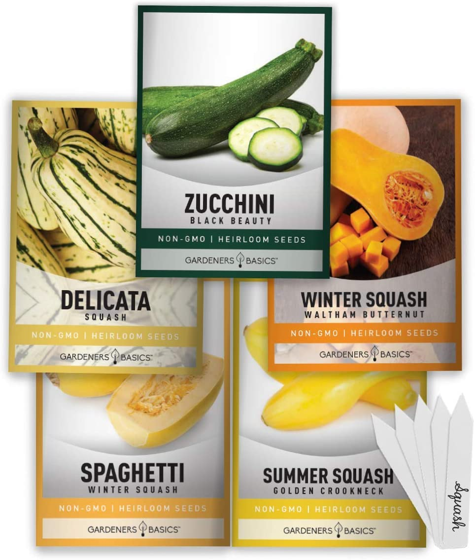 Squash Seeds for Planting 5 Individual Packets - Zucchini, Delicata, Butternut, Spaghetti and Golden Crookneck for Your Non GMO Heirloom Vegetable Garden by Gardeners Basics