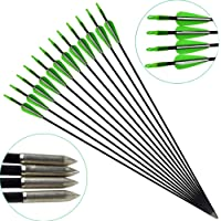 12 Pack Archery 31 Inch Fiberglass Arrows with Target Arrowhead Shooting with Adjustable Nocks for Children Woman Beginner Hunting