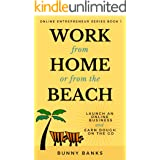 Work from Home or from the Beach: Launch an Online Business & Earn Dough on the Go (Online Entrepreneur Book 1)