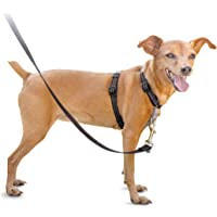 PetSafe 3in1 Harness, from the Makers of the Easy Walk Harness, Fully Adjustable No-Pull Dog Harness, Black, Extra Small