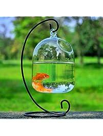 Aquariums Amp Fish Bowls Amazon Com