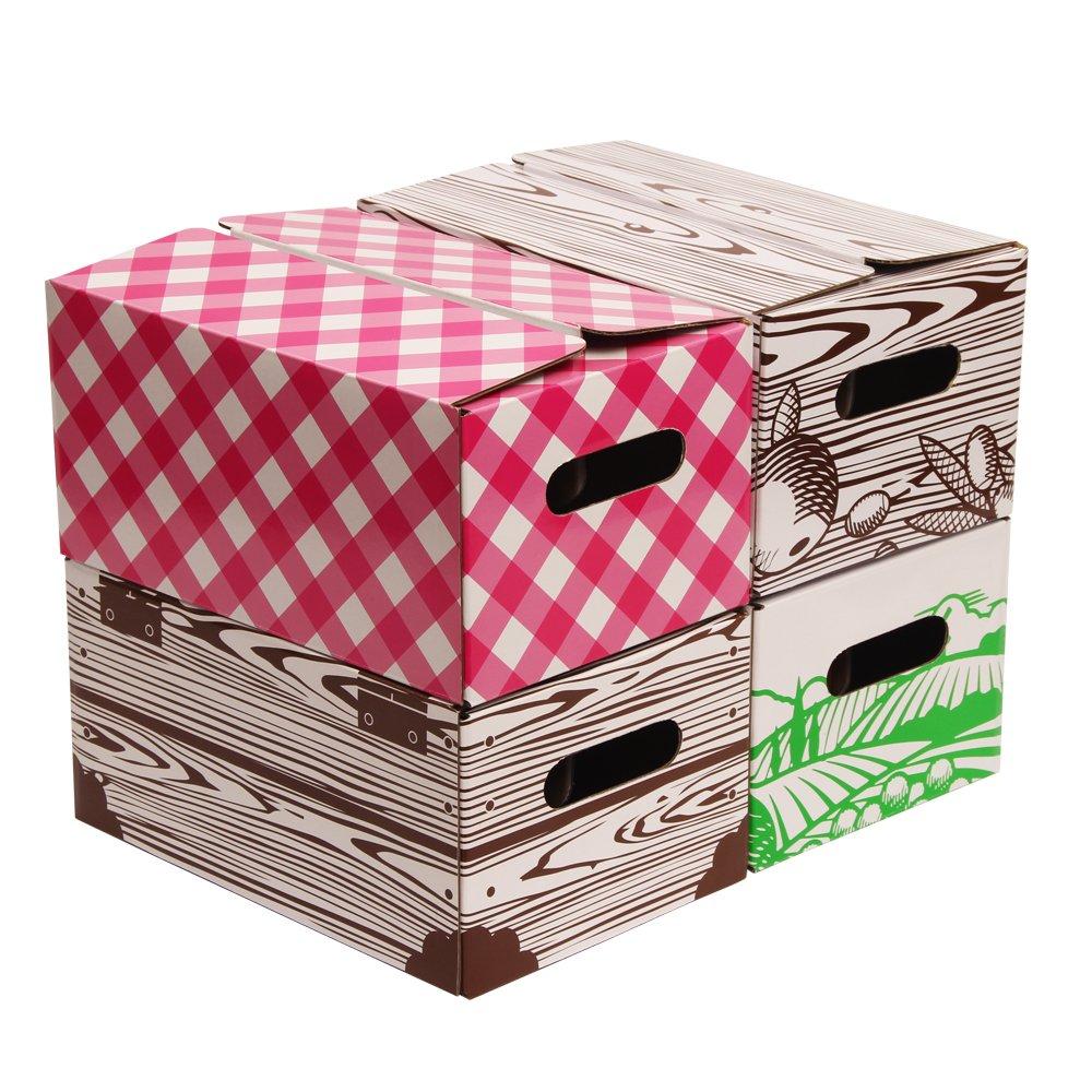 Set of 4 Pint Jar Storage Boxes by VICTORIO VKP1231