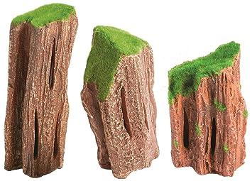 Acuario Deco madera fósiles M: Amazon.es: Productos para mascotas