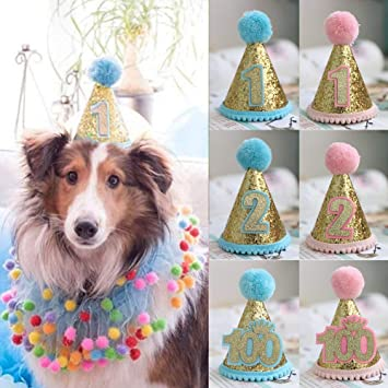 Pet Birthday Hat Dog 1st For Boys Small Medium Large Dogs Cats Costumes