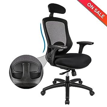 Amazon.com : LONGEM Ergonomic Office Chair with Adjustable Back ...