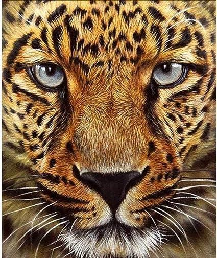 Animal 5D DIY Full Diamond Painting Cross Stitch Embroidery Kit Art Decor 2019