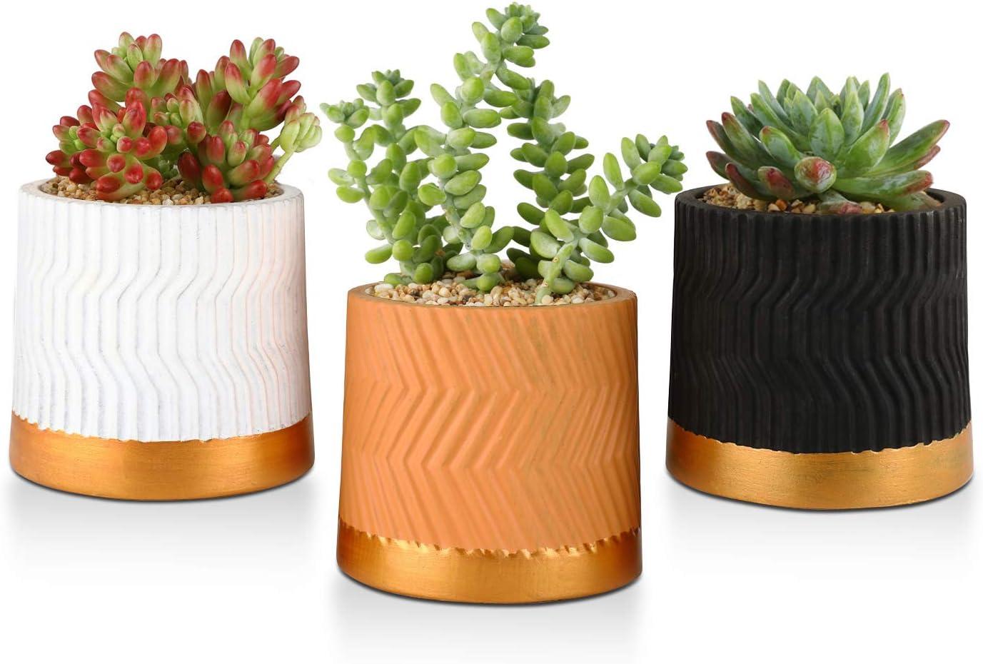 Small Handmade bonsai pot Indoor Made in usa. succulent