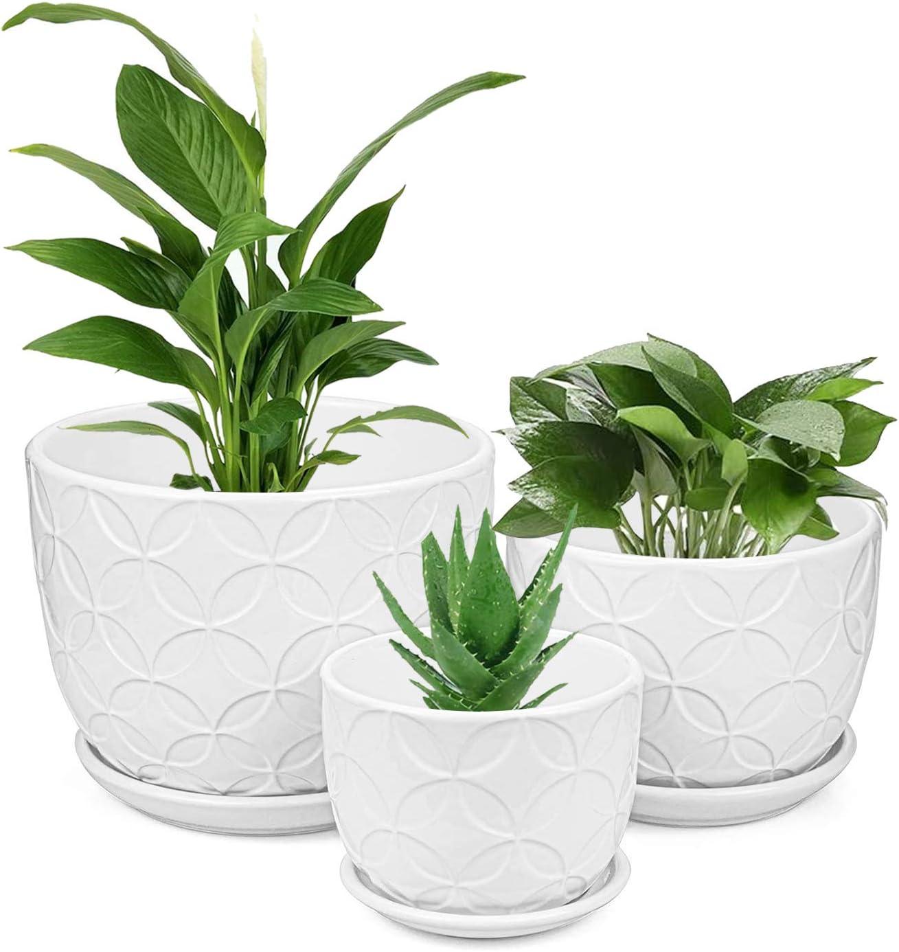 Plant Pots, Brajttt Flower Pots Planters Set of 3,Modern Decorative Succulent Pot Gardening Pot with Drainage Hole for Indoor Plants Flowers Herbs