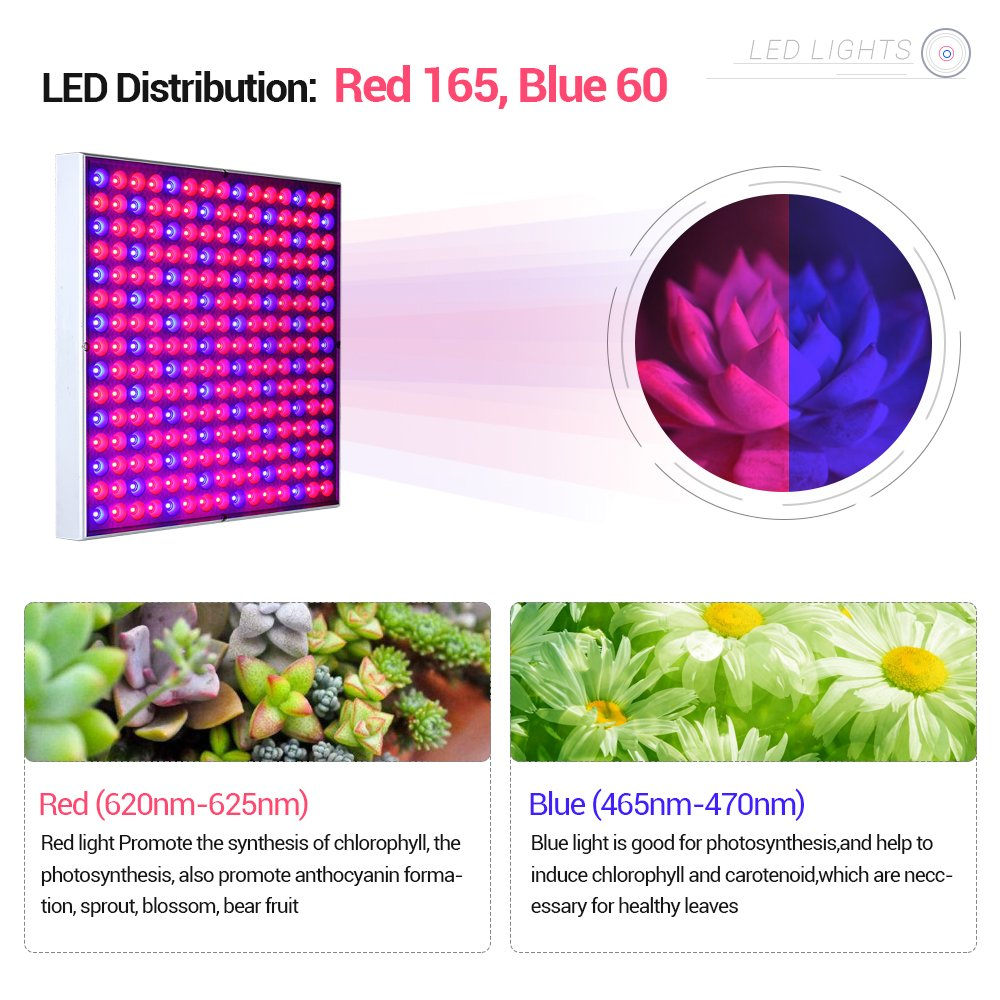 ANNT 45W LED Plant Grow Light Panel Growth Lamp Red Blue Spectrum Hanging Lighting for Hydroponic Aquatic Indoor Plant Growth and Flowering by ANNT (Image #4)
