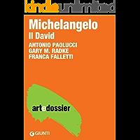 Michelangelo. Il David